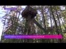 Уникальный высотный экопарк откроется в Приокско-Террасном заповеднике