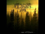 From the Sunset, Forest and Grief - Lifeless