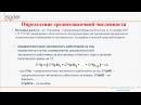 Часть 1/8. Алгоритмы расчета средней и среднесписочной численности