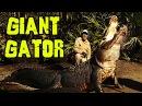 1200 LB Alligators that can eat you WHOLE