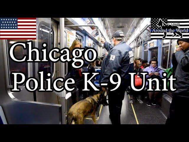 Chicago Police K-9 Unit
