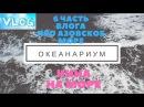 Океанариум, акулы, Ейск, Азовское море, 6 часть ВЛОГ