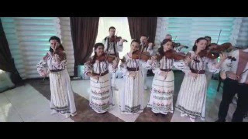 Cristina Ceaus Orchestra Fratii Stefanet - Floare alba de boboc ( tel 37360220393)
