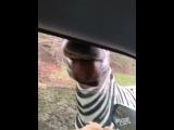 Zebra Wazzup