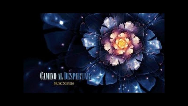 Música de sanación ~ Lex Van Someren