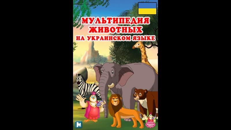 Мультипедия животных на украинском языке Літера Б - Барс