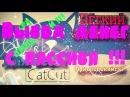 Вывод денег с пассива CatCut Как заработать деньги