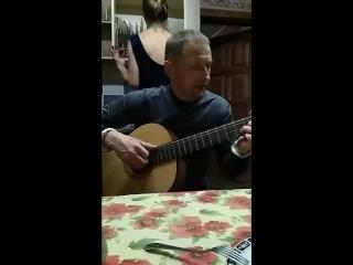 Dim Novikov - Live