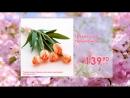 Высшая Лига_Букет из 5 Тюльпанов-всего 139 руб 90 коп.