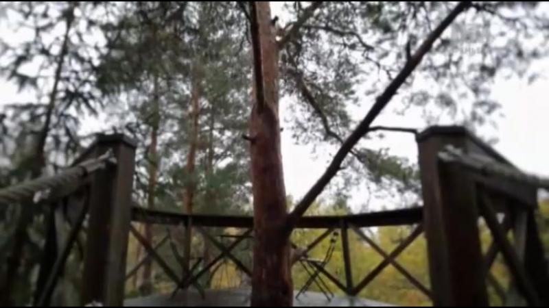 Дома на деревьях 6 сезон: 13 серия. Отпуск в Скандинавии / Treehouse Masters (2017)