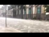 Штормовой прилив в Майами, штат Флорида, США. (10.09.2017)