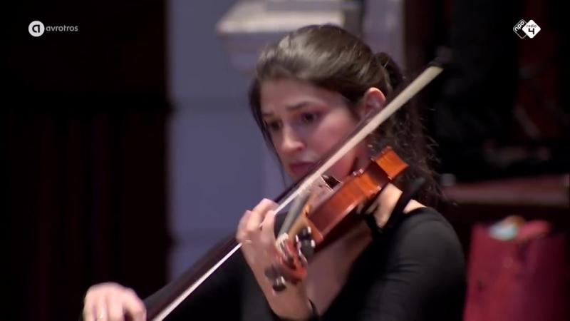 1048 J. S. Bach - Brandenburg Concert in G Major nr. 3 BWV 1048 - Hofkapelle München - Rüdiger Lotter
