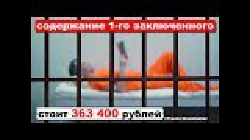 Содержание 1-го заключенного увеличилось в 2,5 раза и обходится в 363 400 руб | Pravda GlazaRezhet