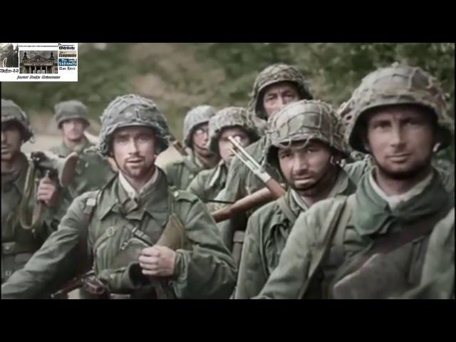 Танковый корпус SS 'Leibstandarte' Нормандия 1944