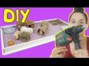 DIV Стеллаж для морских свинок - от А до Я