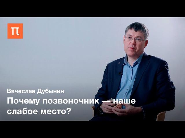 Вячеслав Дубынин — Спинной мозг dzxtckfd le,syby — cgbyyjq vjpu