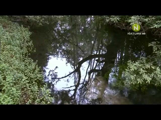 Водный мир Хорватии 2 серия 2012 HD