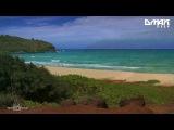 Sundrifting feat. Seven Palmberg - Saline Water (Original Mix) D.MAX Deep Promo Video