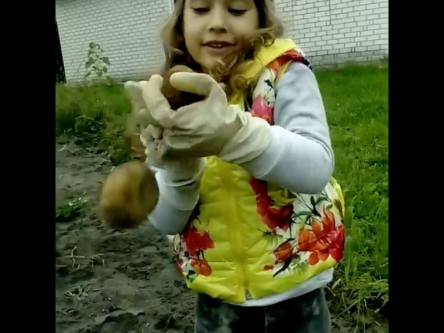 Боже ребенок мой 🙈. Как это трогательно❤️❤️❤️ девочкаскартошкой 💥😅 Арис, 3 года и 8 месяцев вдеревнеубабушки
