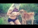 Красивая Девушка И Лошадь | Как Обучить Лошадь | Часть Обучения Лошади 01
