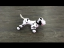 Продвинутая Радиоуправляемая робот-собака