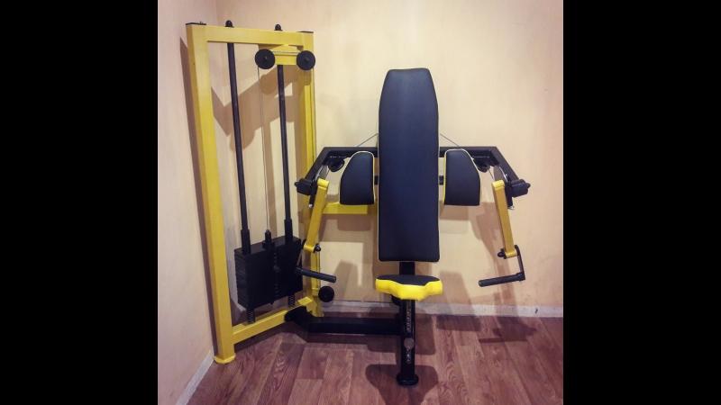 Gold's Gym (Волочиськ) Тренажер Біцепс машина