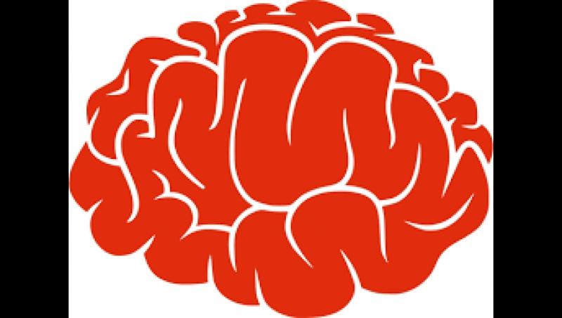Слишком сложная игра разума (Brain is on ✓)