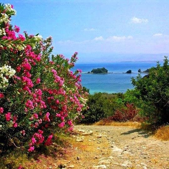 Тур на Кипр в мае на долгие выходные за 13500 с человека