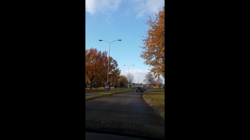 Вот такая у нас яркая красивая осень. Едем по окраине Эйндховена. Нидерланды.