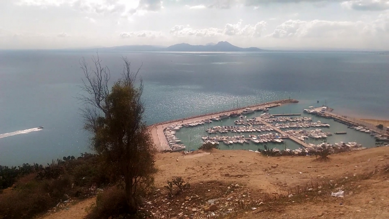 Туниский залив
