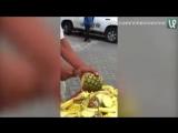 Продавец ананасов
