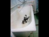 Теперь это моя ванна!!!