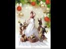 Новогодняя елка от Милы Закатовой на НТВ