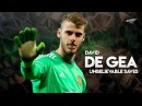 David De Gea - Unbelievable Saves - 2017/2018 HD