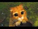 Видео к мультфильму «Шрек2» (2004): Трейлер