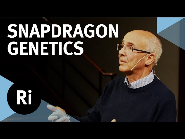 New Discoveries in Population Genetics - with Enrico Coen