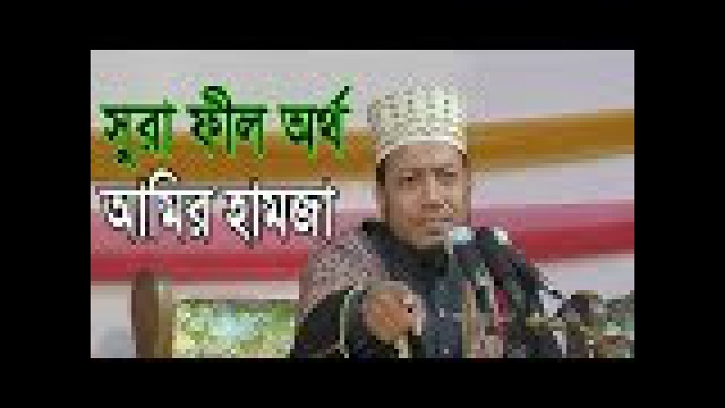 সেরা ওয়াজ ২০১৭ Hafez Mawlana Amir Hamza Bangla Waz New 2017 Full