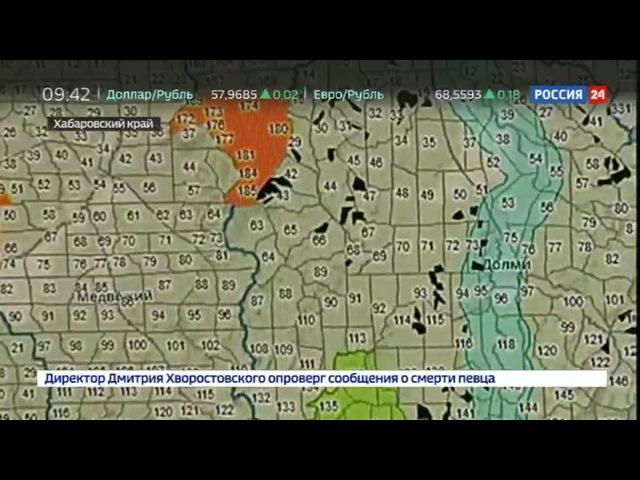 Новости на «Россия 24» • Сезон • Система Кедр - новые технологии против черных лесорубов » Freewka.com - Смотреть онлайн в хорощем качестве