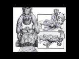 Грудные мышцы. 10 - фактов (тренировки, анатомия, биомеханика).