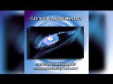 buy instrumentals by cat soup