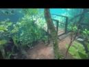 Подводная тропа, образовавшаяся из-за сильных дождей