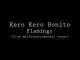 Kero Kero Bonito - Flamingo (live multi-instrumental cover)
