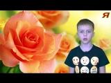 ?КАК ПРАВИЛЬНО ВЫБРАТЬ ЦВЕТЫ НА 8 МАРТА? какие цветы дарить женщине на женский день кому зачем розы
