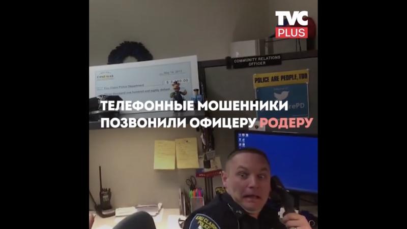 Разговор офицера и мошенника