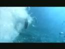 Stefie Shock - Un Homme à la Mer
