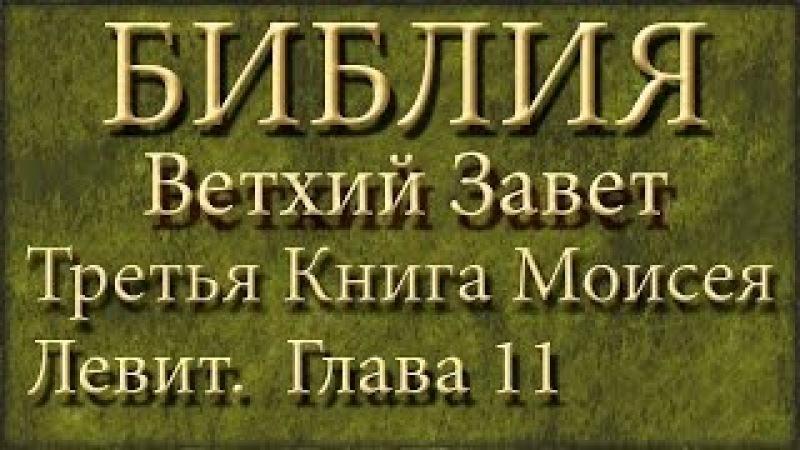 Библия.Ветхий завет.Третья книга Моисея Левит.Глава 11.