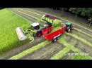 Harvesting fiber hemp Claas Xerion 4000 Vezelhennep oogst DunAgro
