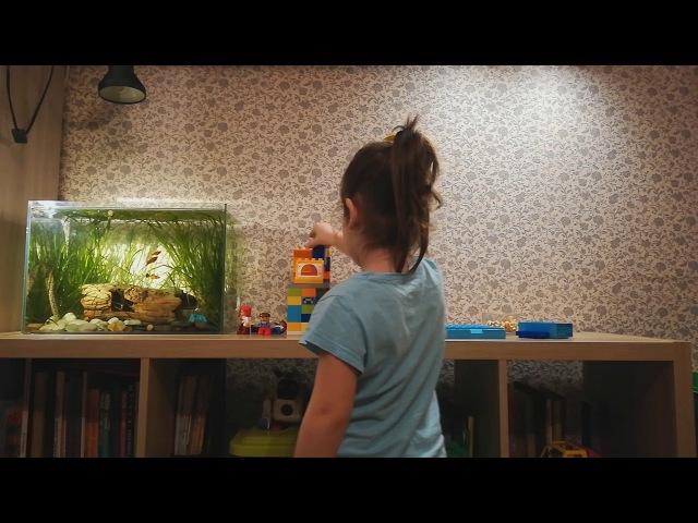 Лего, рыбки, печенюшки и говорящие игрушки | Маленькая Волшебница