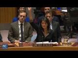 U.S. vetoes UN Security Council draft resolution on Jerusalem