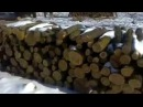 Вывозка леса,Акация..Урал зверь